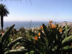 Madeira die Trauminsel 12