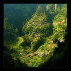 Madeira - für mich die grünste und schönste Insel Südeuropas !