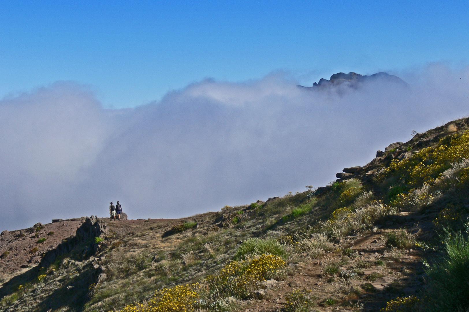 Madeira - Wandern im Nord-Westen