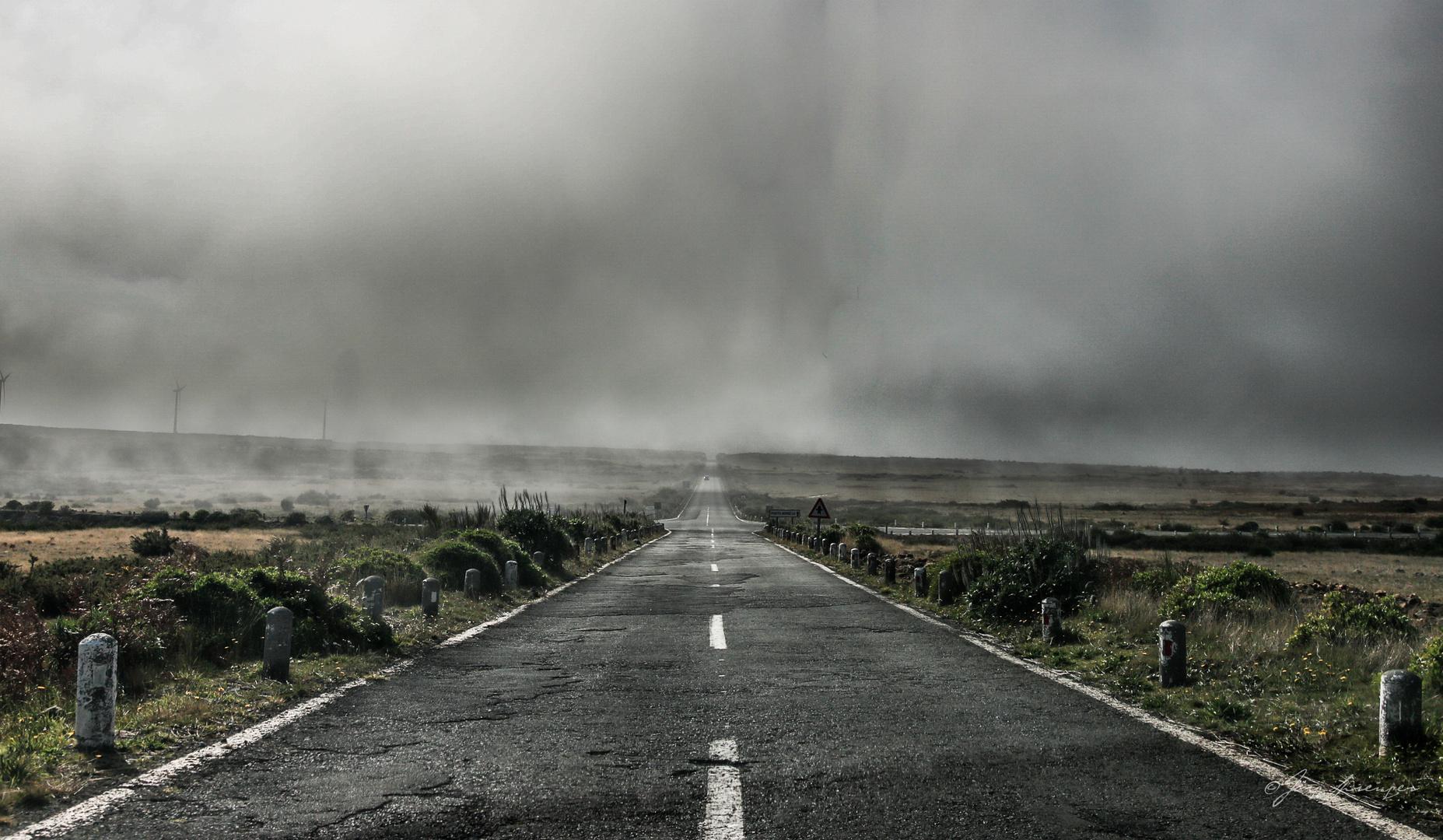 Madeiras Hochebene im Nebel