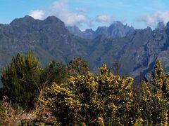 Madeira`s mountains