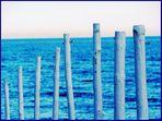 maderas y mar...