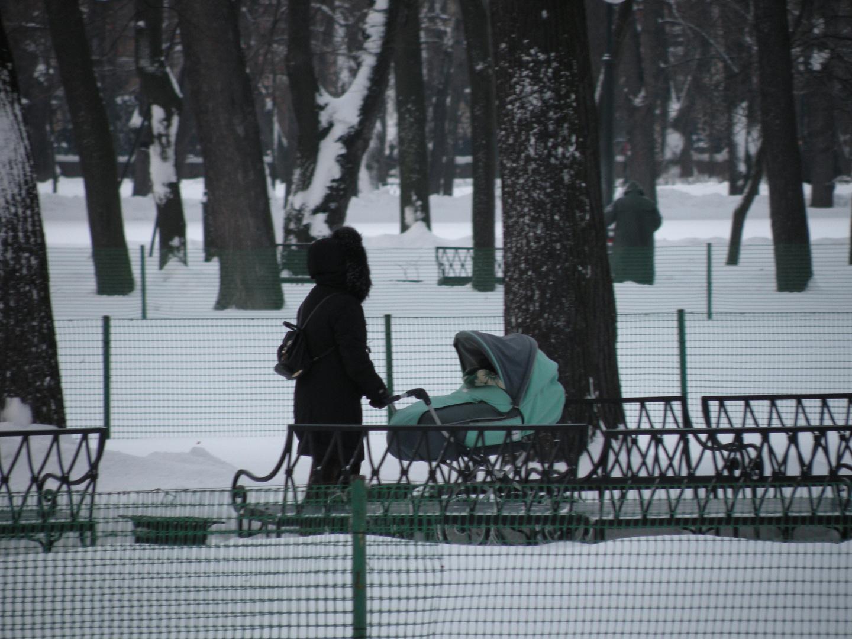 Madre con carrozzina nel parco