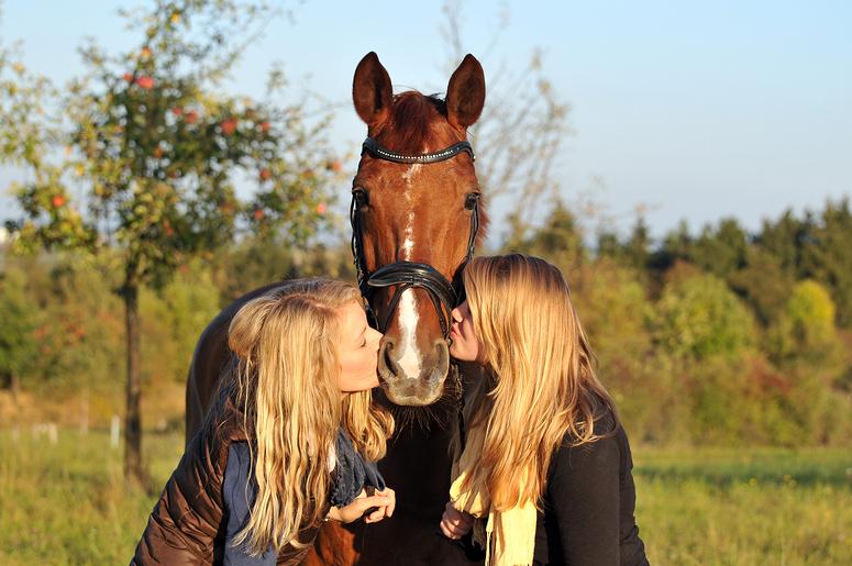 mädchen lieben pferde foto & bild | tiere, haustiere