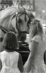 Mädchen lieben Pferde ...