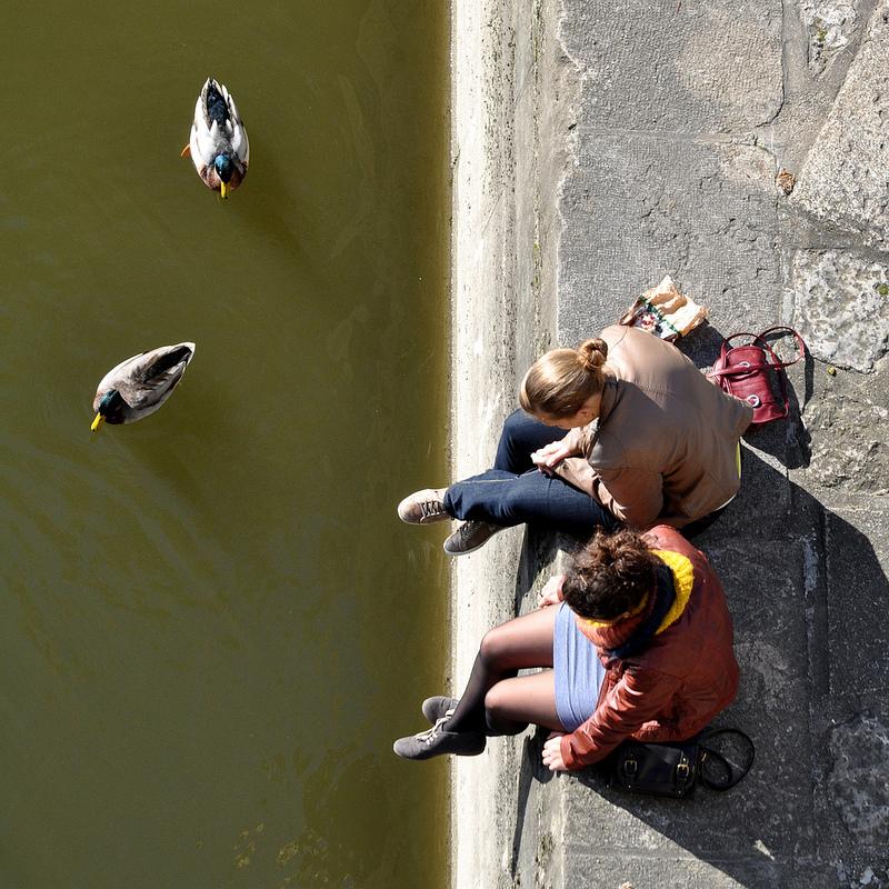 Mädchen und Enten