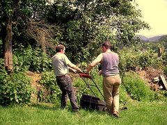 Männer bei der Gartenarbeit