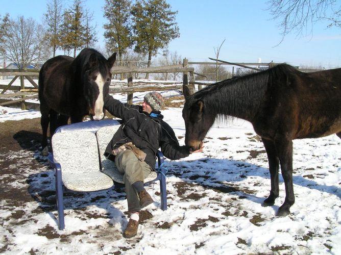 Männer und Pferdeliebe