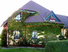 Märchenhaft,       gesehen in Middelhagen/ Rügen