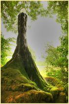 Märchenhafter Wasserbaum