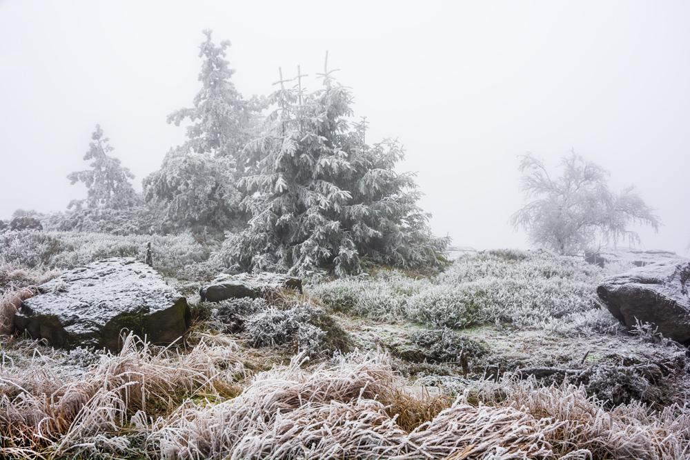 Märchenkulisse auf dem Hohen Schneeberg