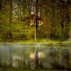 Märchenwaldstimmung im Schloßpark