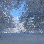 Märchenwelt aus Schnee