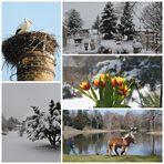 März-Wetter