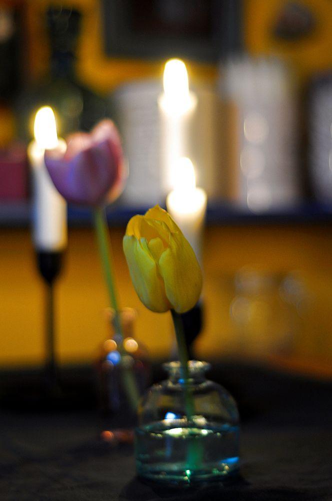 Märzabend am Küchentisch