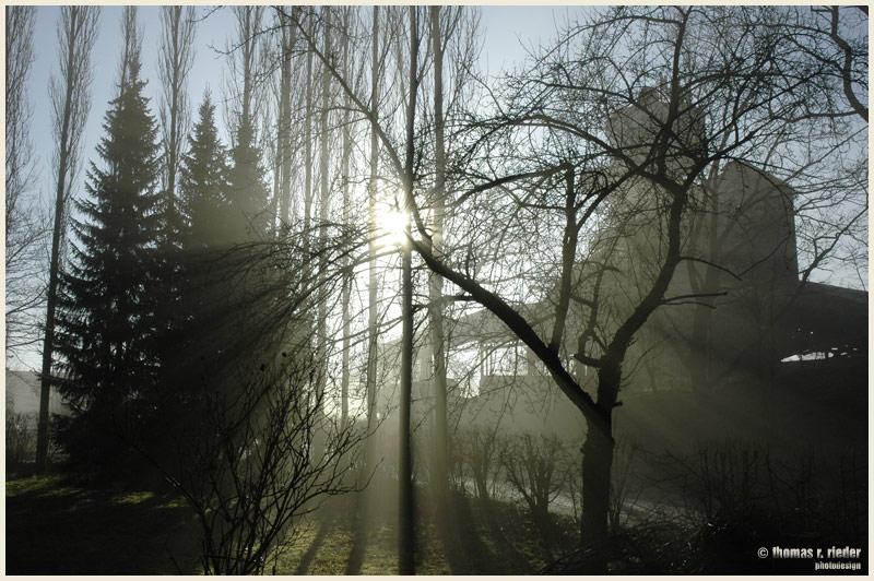 Märzmorgen