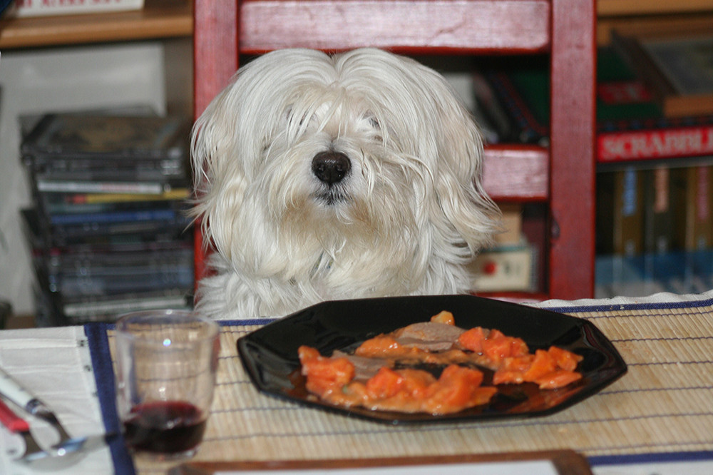 Maetro à table