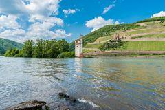 Mäuseturm und Ruine Ehrenfels 82