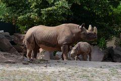 Magdeburger Zoo