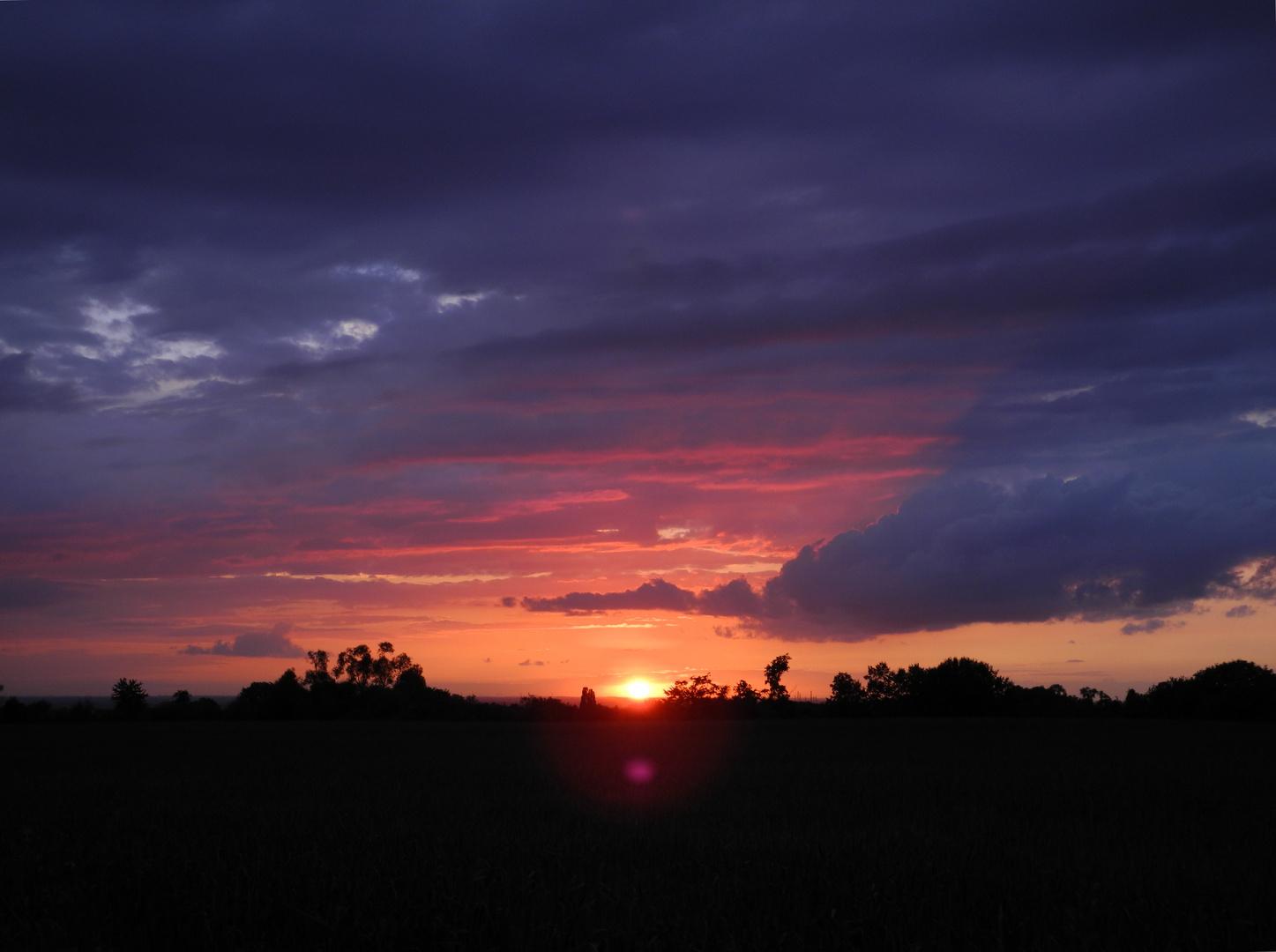 Magenta-Sonne