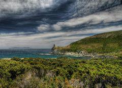 Maggio in Corsica