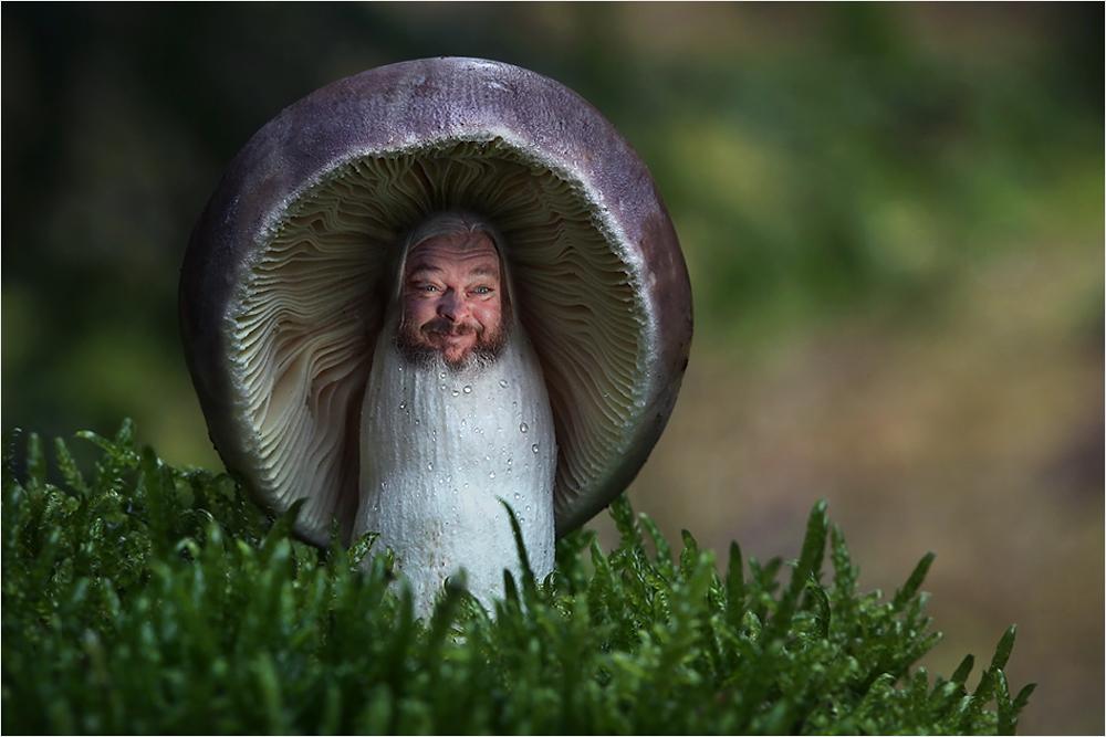 Magic Mushroom :)