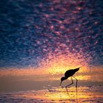 Magic sunset #4