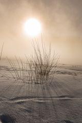 Magische Winterstimmung