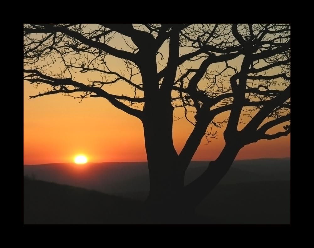 Magischer Moment: Sonnenaufgang am Köterberg...