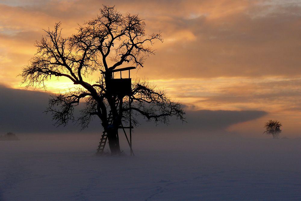 Magischer Winterabend