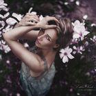 Magnolian Dreams