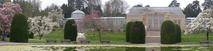Magnoliengarten Wilhelma Stuttgart