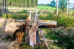 Mahnmal zerstörerischer Naturgewalten