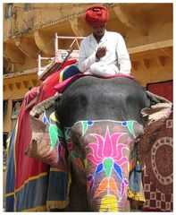 Mahud goes mobile...