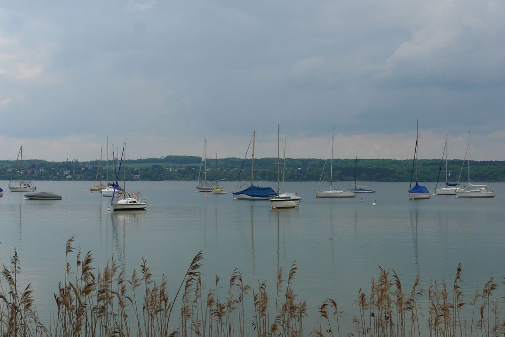 Mai am Ammersee