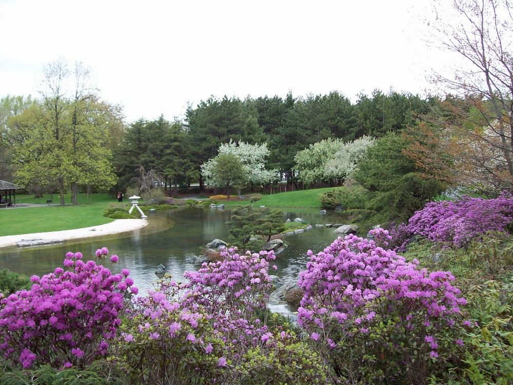 Mai au Jardin japonais