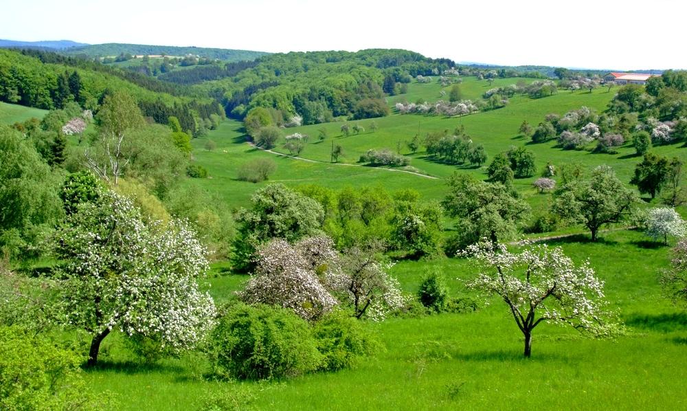 Maienduft und Frühlingsluft......
