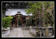 Main gate of Shrine