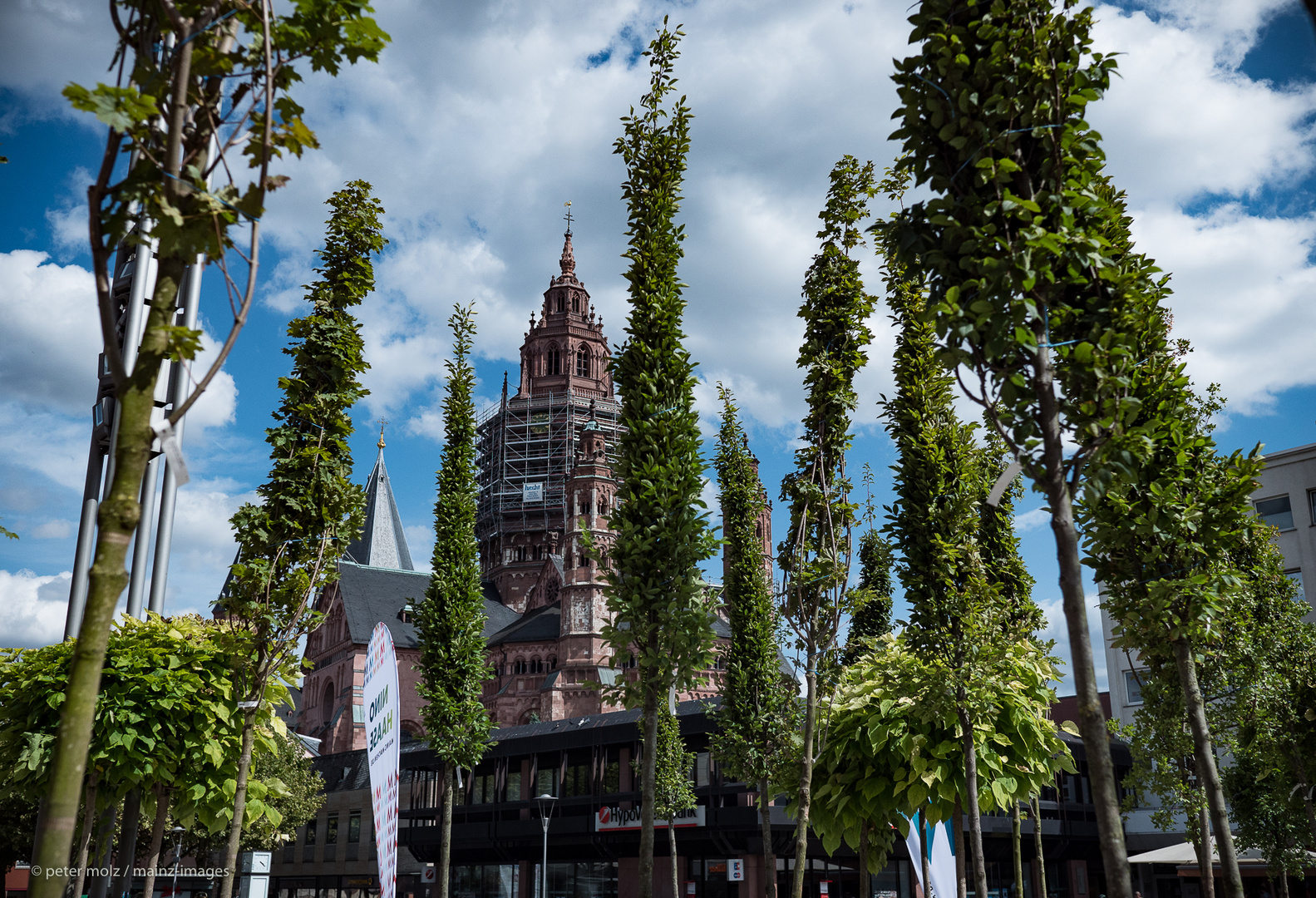 Mainz - Die Innenstadt könnte deutlich grüner werden!