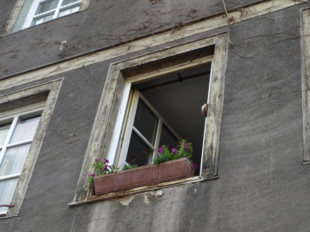 Mainz in der Altstadt