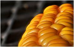 Mais auf Gartentisch :o)