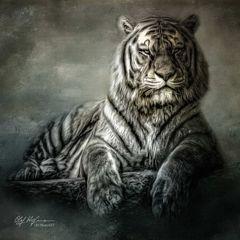 Majestätisch...