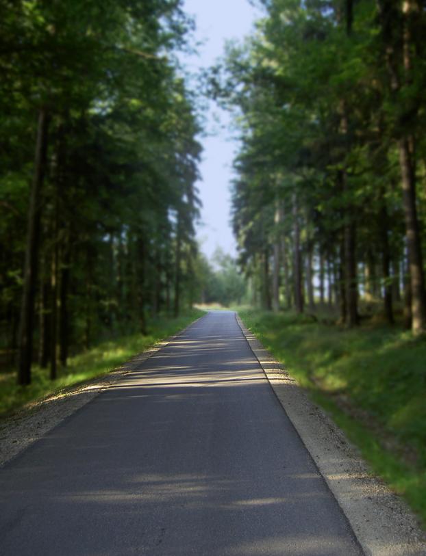 make your way //