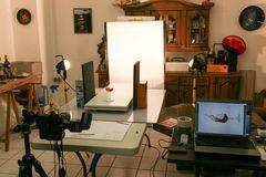 Making of...
