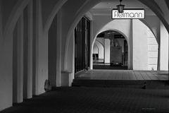 Makro-Tour Mühldorf_8934