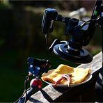 Makrofotografie heute - ...