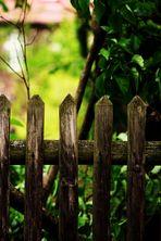 Mal über den Zaun schauen....zum Nachbarn