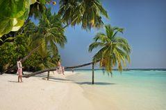Malediven no News no Shoes
