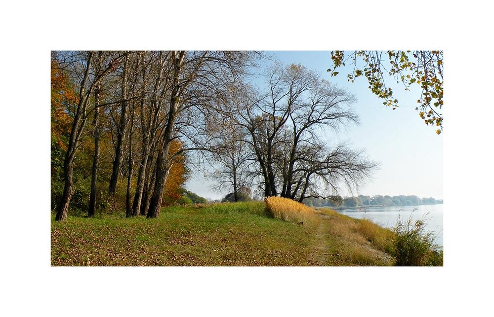 Maler Herbst (3)