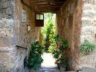 Mallorca Impression I